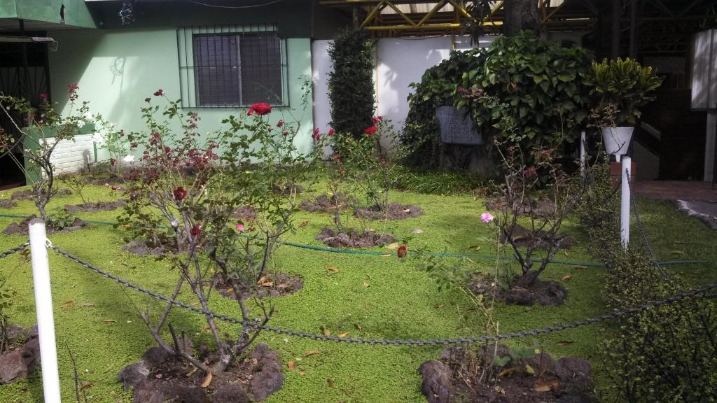 El jardín de las rosas. Lugar donde fueron asesinados los jesuitas el 16 de noviembre de 1989. Foto de Héctor Silva, tomada en diciembre de 2013.