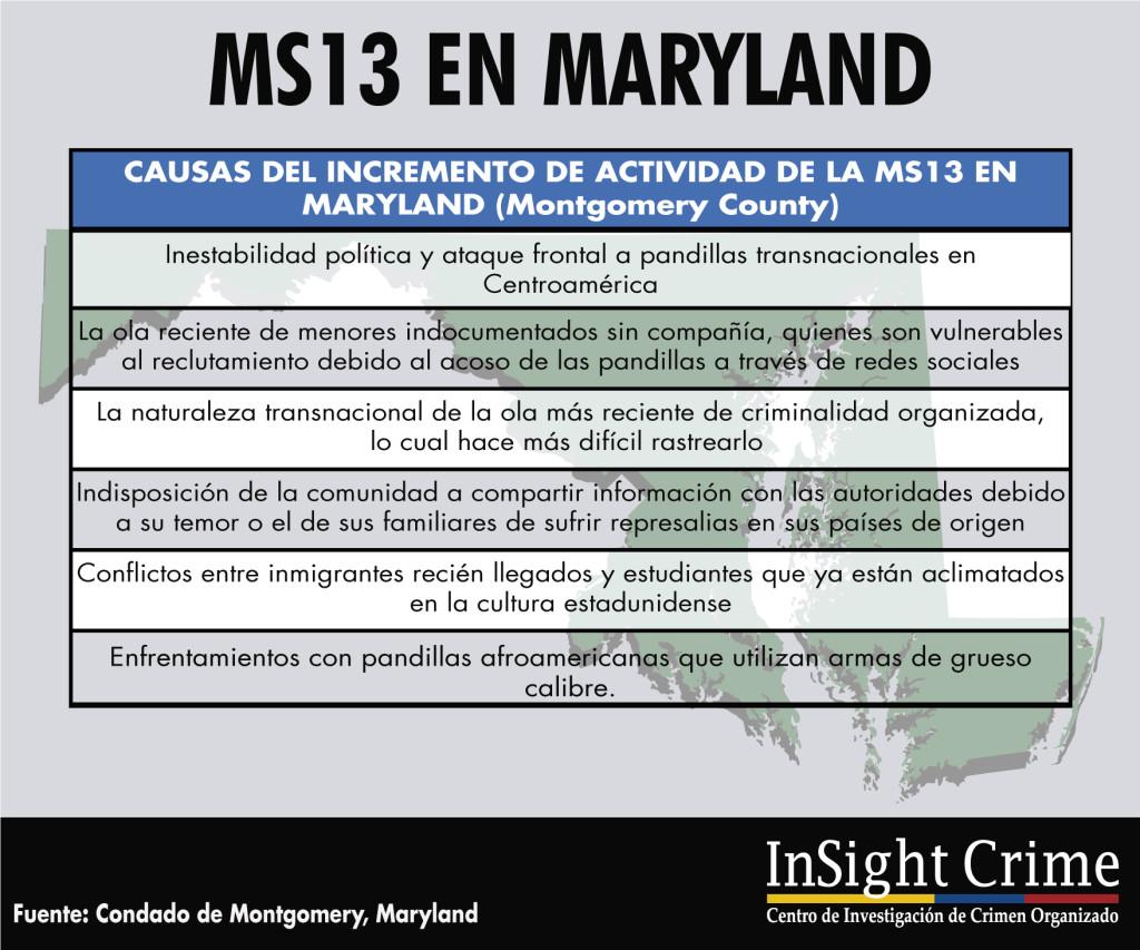 info-ms132-espanol