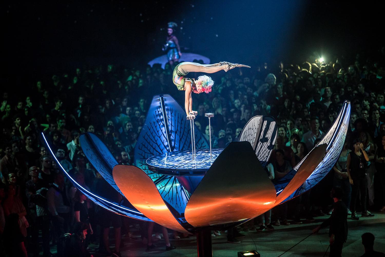 Foto de Rodrigo Alonso. Prensa Soda Stereo SEP7IMO DIA by Cirque du Soleil.